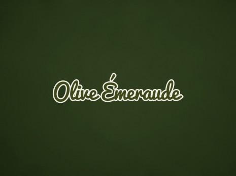 Diseño gráfico de logotipo y marca para etiquetas de aceite de oliva