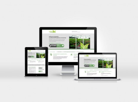 Diseño de Landing Page para Viverum - Global System